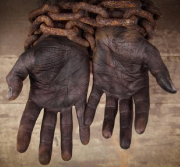 ¿ Quién trajo los esclavos a Norteamérica?